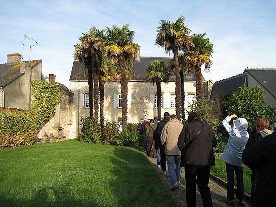 Ellwood's garden