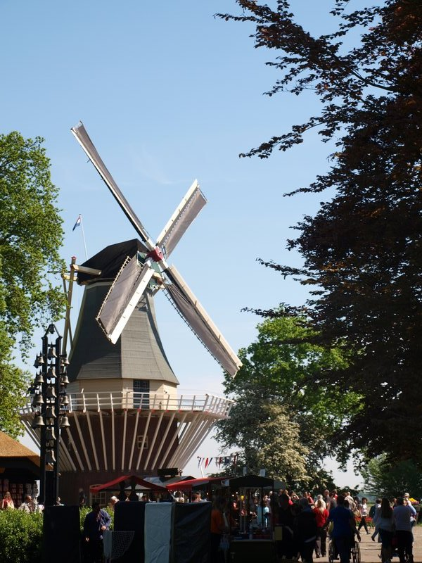 A windmill (and there are tulips there somewhere)