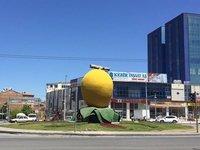 Apricot Roundabout, Malatya