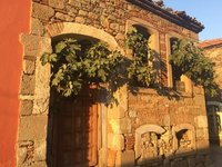 Bergama House Overtaken by Fig Trees
