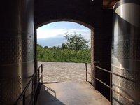 Schuchmann Winery Near Telavi