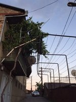 Suburban Skyline in Gori Resudential Area - Gas Pipes, Vine Trellis & Satellite Dish