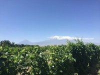Mt Ararat, Greater & Lesser - Ararat Region Produces Great Wines