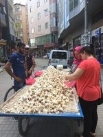 Garlic for Sale in Igdir