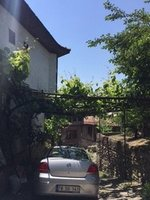 A Grapevine Garage