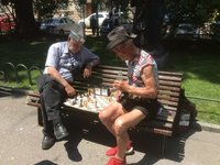 Chess Being Played in the Park - Love the Sun Hats