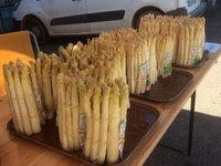 Local Asparagus for Sale by the Roadside