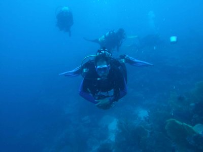 GD3_LT-diving-blue.jpg
