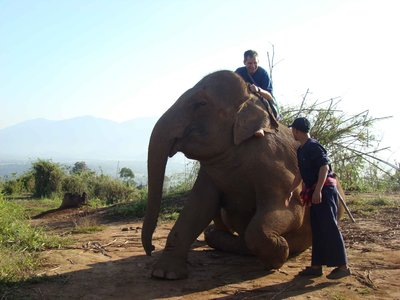 LT-on-rising-elephant.jpg