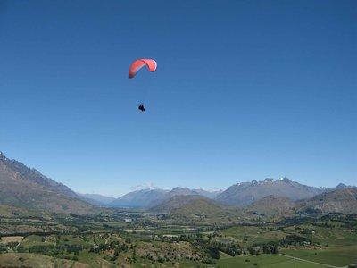 NZ2_Paragl..canopy1