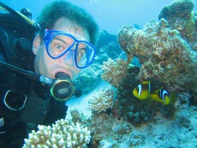 REDSEA_lt-..ne-fish.jpg