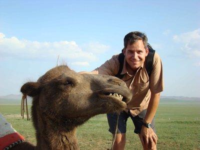lt-camel.jpg