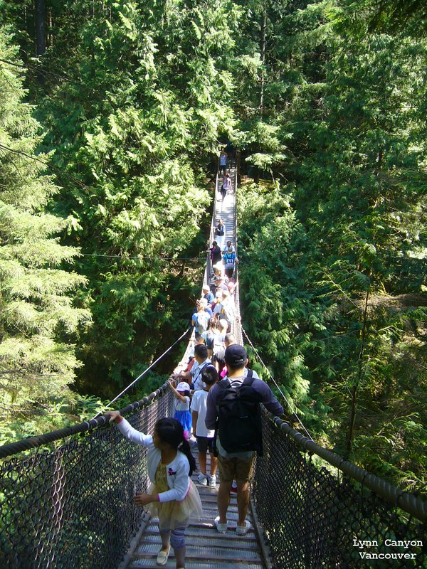 Suspension Bridge in Lynn Canyon Park