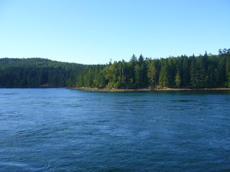 The ferry route had us passing through Gulf Islands National Park