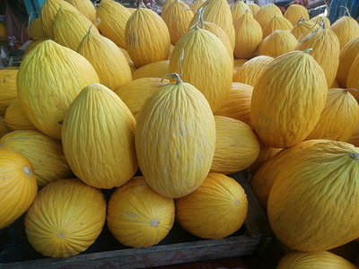 Yellow melons-yum!