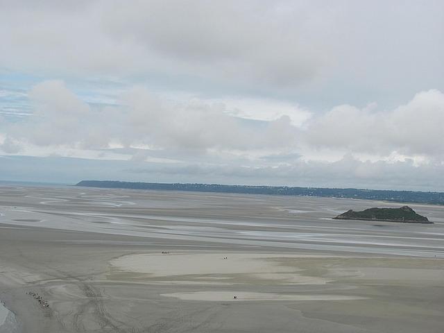 MSM low tide