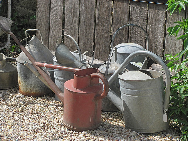 Still life with antique watering cans