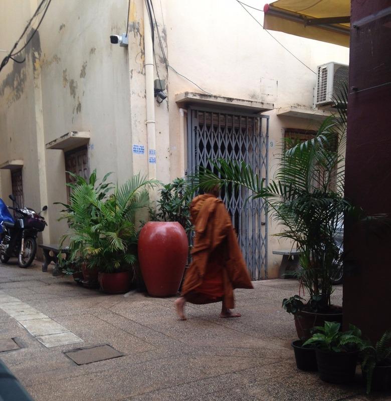 Little morning monk