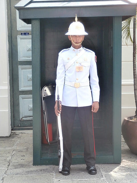 Another guard at the palace