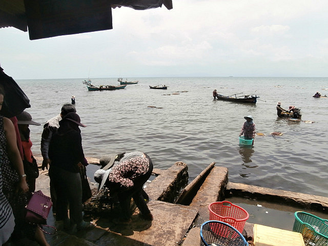 Bringing in the crabs in Kep