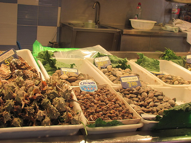 Shellfish at the Mercado