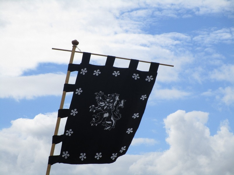 Heraldic Standard
