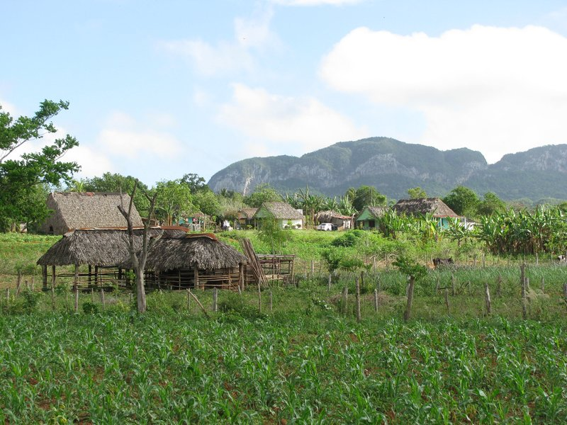 Vinales scenery
