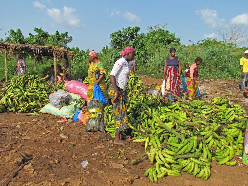 Plantian sellers
