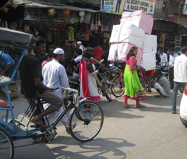 The Busy Streets of Delhi