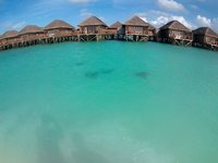 4 Manta Rays by the water villas