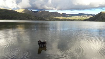 Laguna Piuray