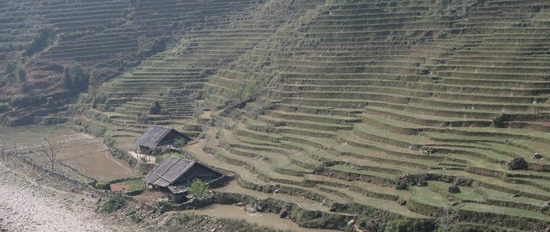 The rice terraces of Sa Pa in Vietnam.
