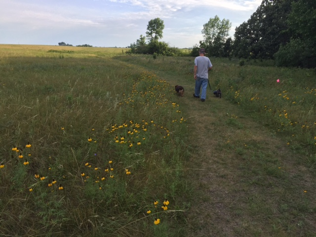 Don and doggies on the prairie