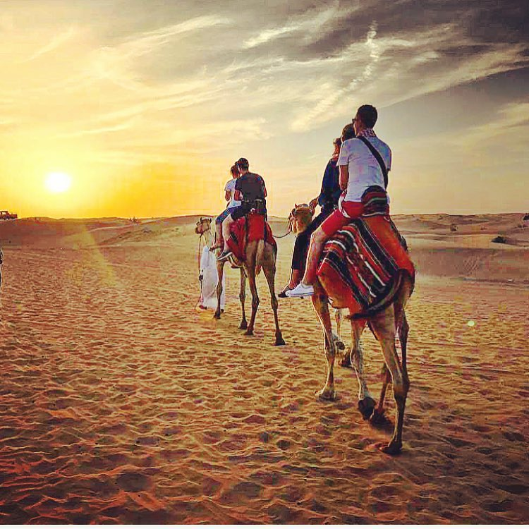 Evening-Desert-Safari-Dubai-Ammar-Tours