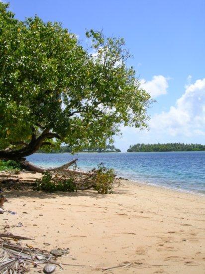 Beach on Nanumea 01