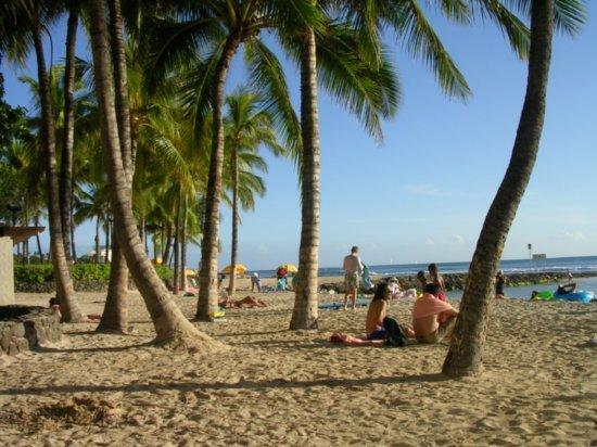 Waikiki Beach 03