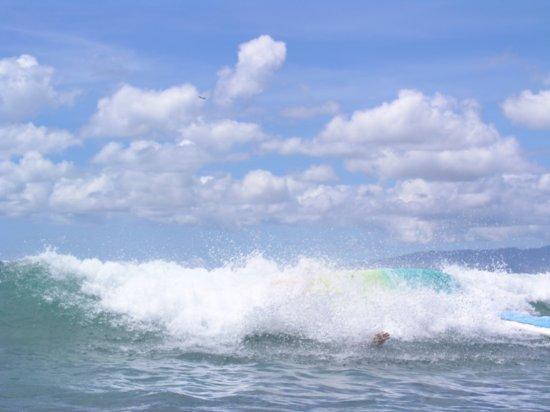 Surfing Waikiki 74