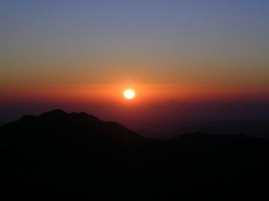 Mt. Sinai 28