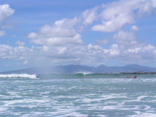 Surfing Waikiki 17
