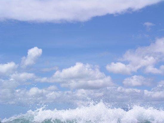 Surfing Waikiki 40