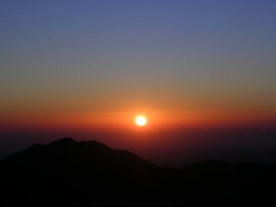 Mt. Sinai 29