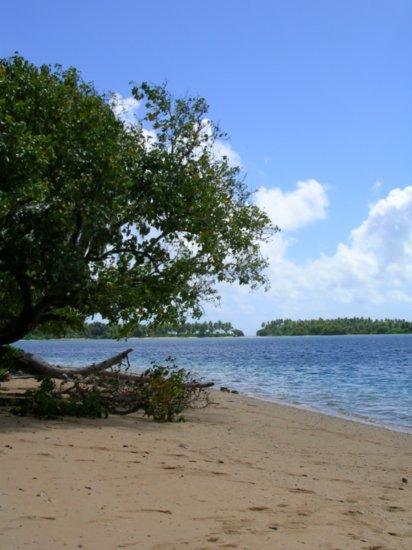 Beach on Nanumea 02