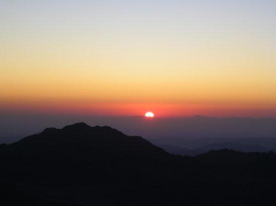 Mt. Sinai 23