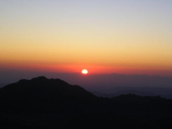 Mt. Sinai 24