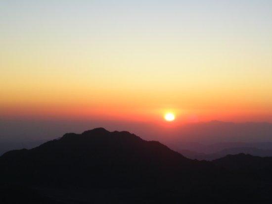 Mt. Sinai 26