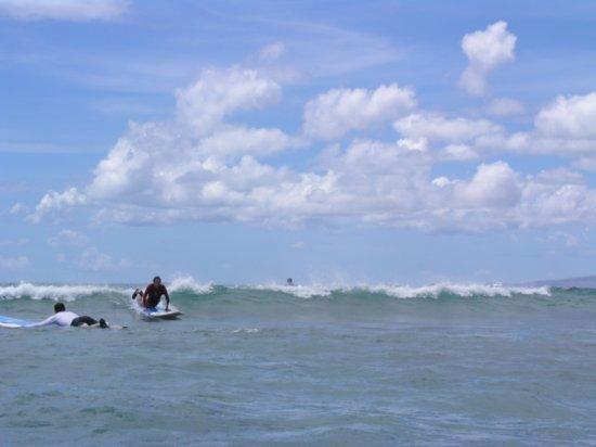 Surfing Waikiki 51
