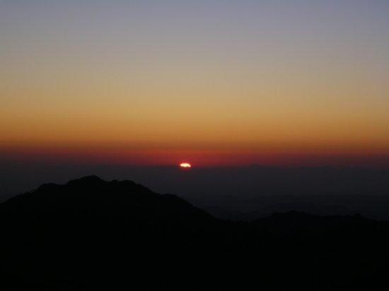 Mt. Sinai 21