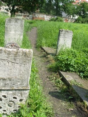 an old jewish cemetery in krakow