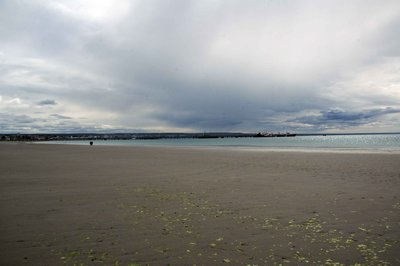 Beach_view.jpg