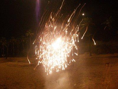 Fireworks_..m_trees.jpg